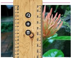 Tiện ích đo kích thước trang web