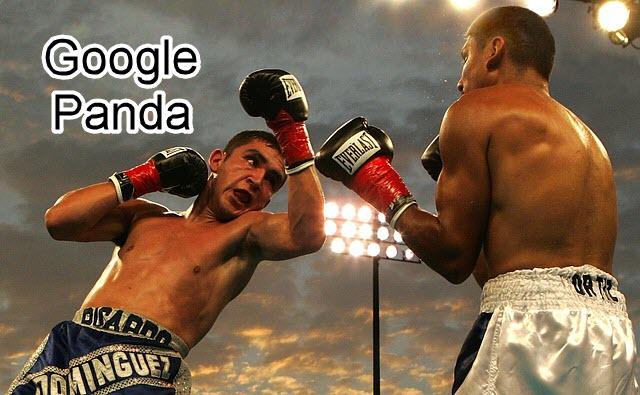 người thắng và kẻ thua sau khi Google Panda cập nhật