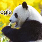 Google Panda là gì? Thuật toán này giúp cải thiện chất lượng tìm kiếm như thế nào?