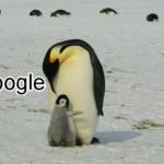 Google Penguin là gì? Và nó ảnh hưởng thế nào đến kết quả tìm kiếm?